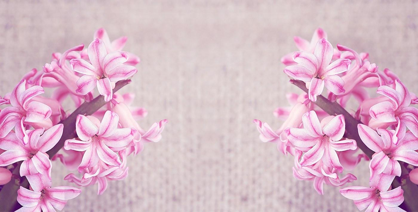 Bloemen houden van mensen ...